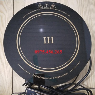 Giá bán bếp từ lẩu âm bàn tròn công suất 3000W tại hà nội